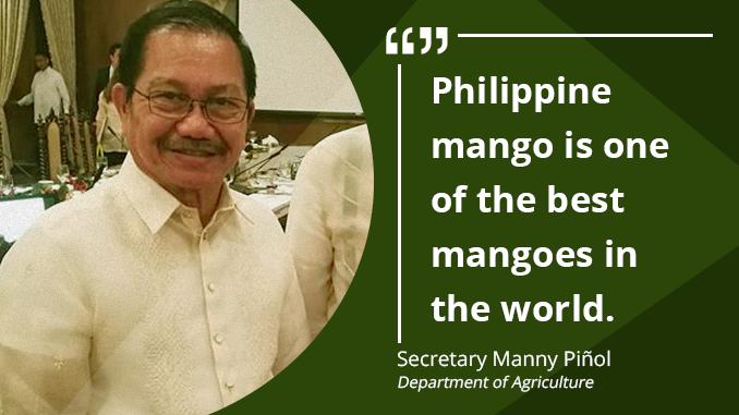5-Year Roadmap for Philippines Mango Development – PIÑOL