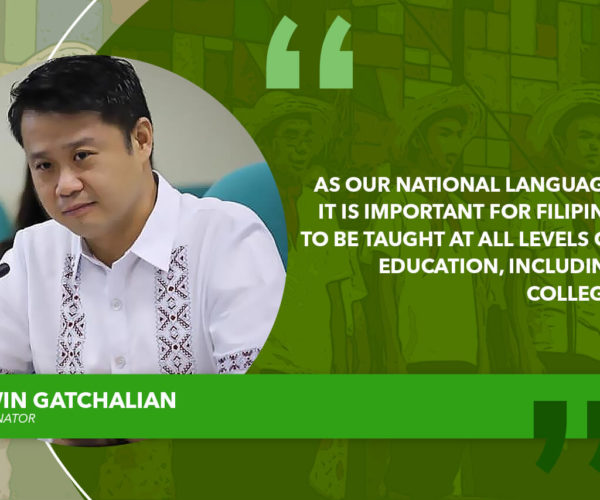 CHED SHOULD CONSIDER RETURNING FILIPINO, PANITIKAN TO COLLEGE CURRICULUM – GATCHALIAN