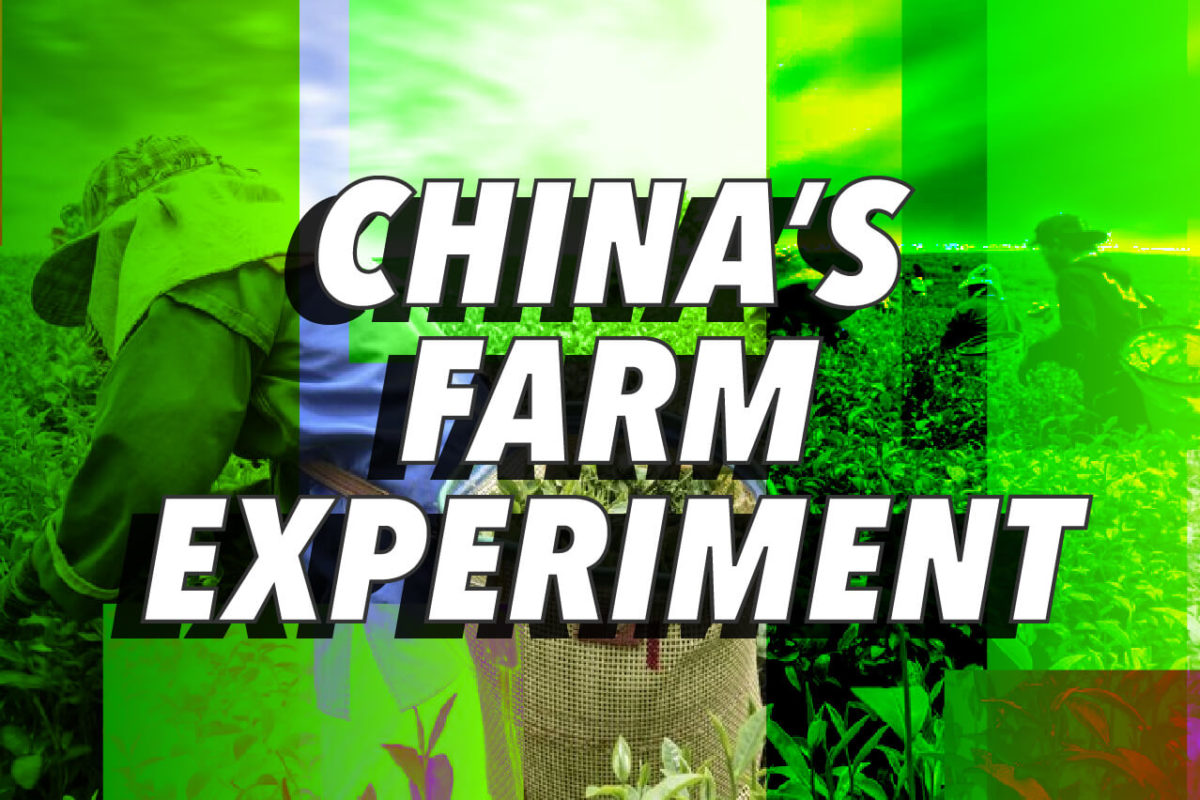 CHINA'S BOLD FARM EXPERIMENT