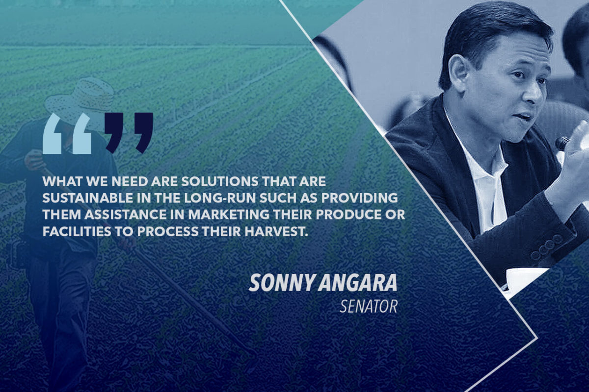HELP FARMERS HIT BY LOSSES DUE TO OVERSUPPLY, LOW PRICES – ANGARA