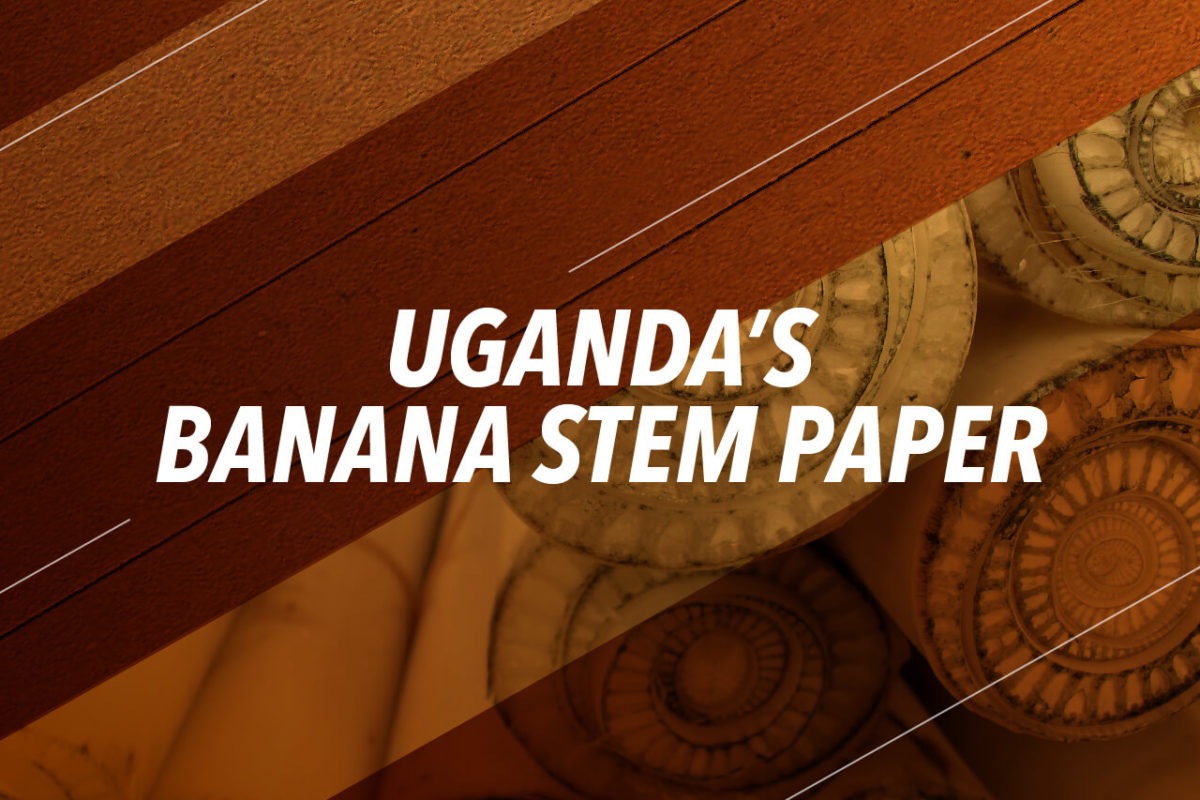 PAPER FROM BANANA STEMS