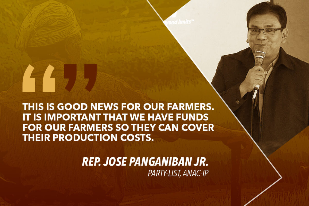 MOVE TO PROVIDE RICE FARMERS WITH P200M IN LOANS IS GOOD NEWS – PANGANIBAN