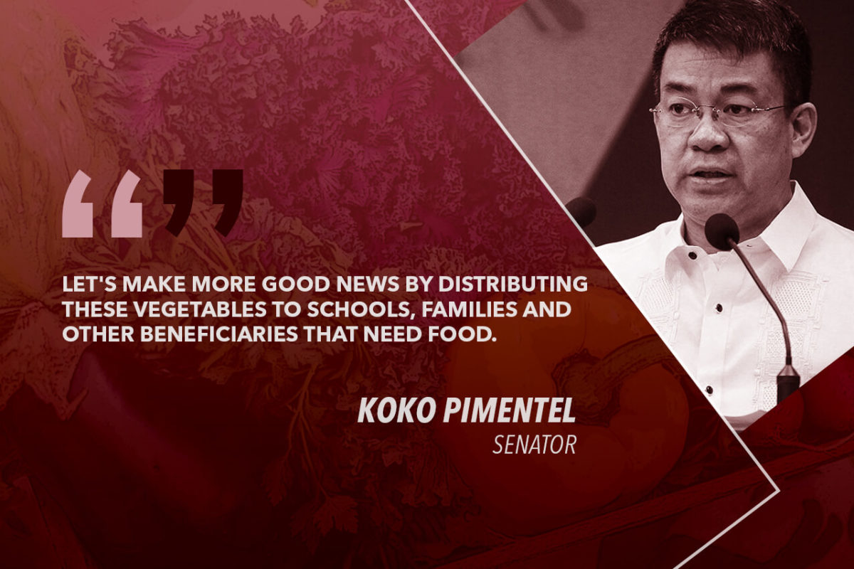 USE OUR 'KOKOTES,' BUY AND USE EXCESS VEGGIE SUPPLY FOR SOCIAL PROGRAMS – PIMENTEL TO GOV'T AGENCIES