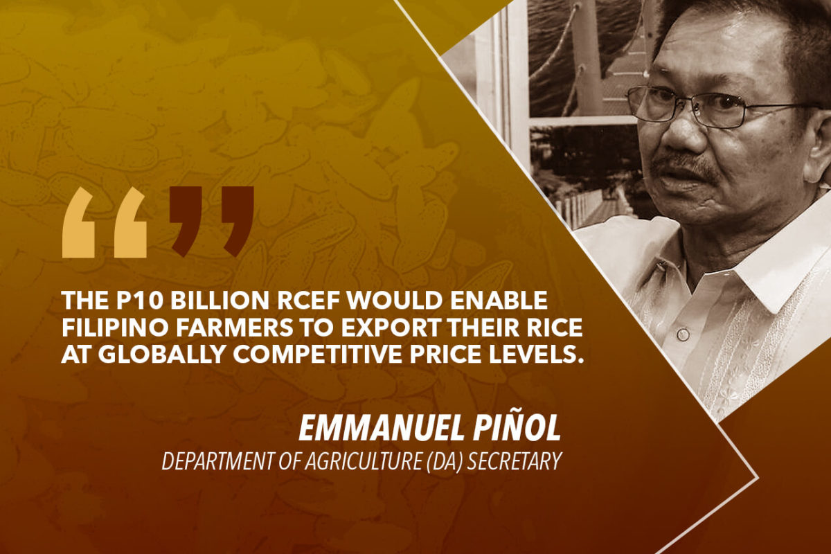 P10B RICE FUND CRITICAL TO ACHIEVE GROWTH IN AGRICULTURE – PIÑOL