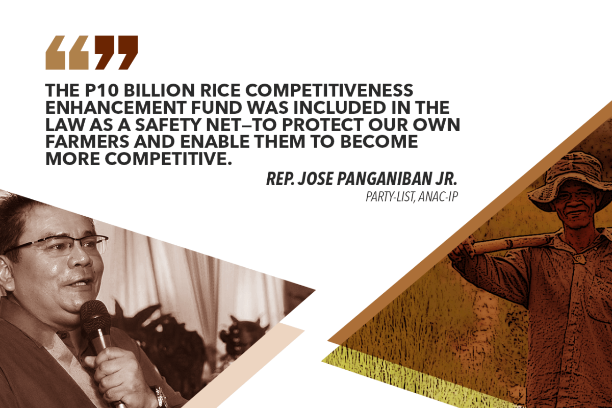 ENSURE SAFETY NET FOR FARMERS UNDER RICE TARRIFICATION LAW – PANGANIBAN