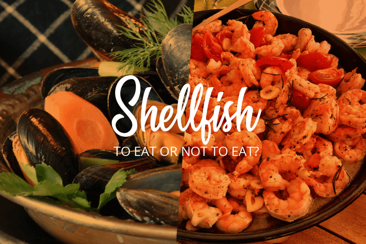 THE PROS AND CONS OF SHELLFISH EATING