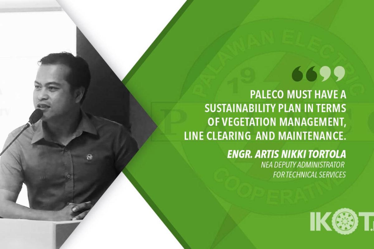 PALECO MUST CREATE A SUSTAINABILITY POWER PROGRAM — NEA