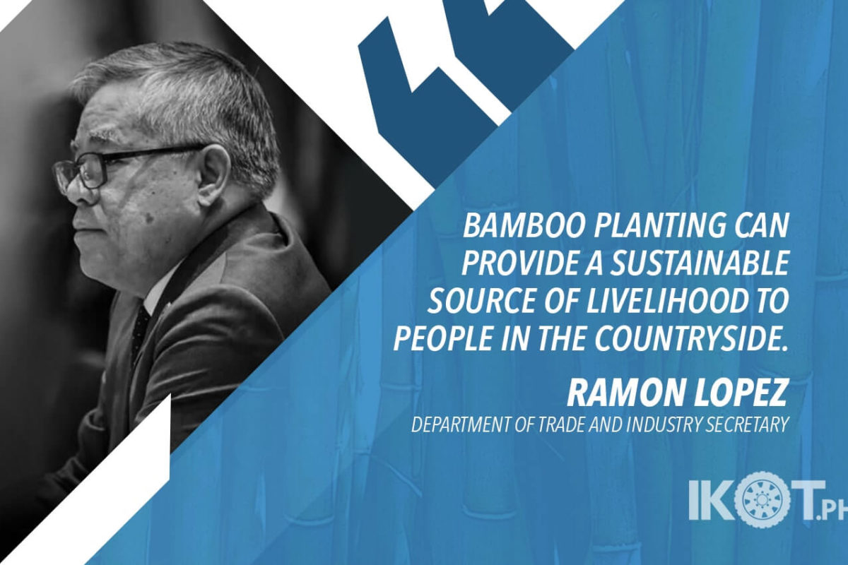 19,000 HECTARES OF LAND TO BE CONVERTED TO A BAMBOO PLANTATION – LOPEZ
