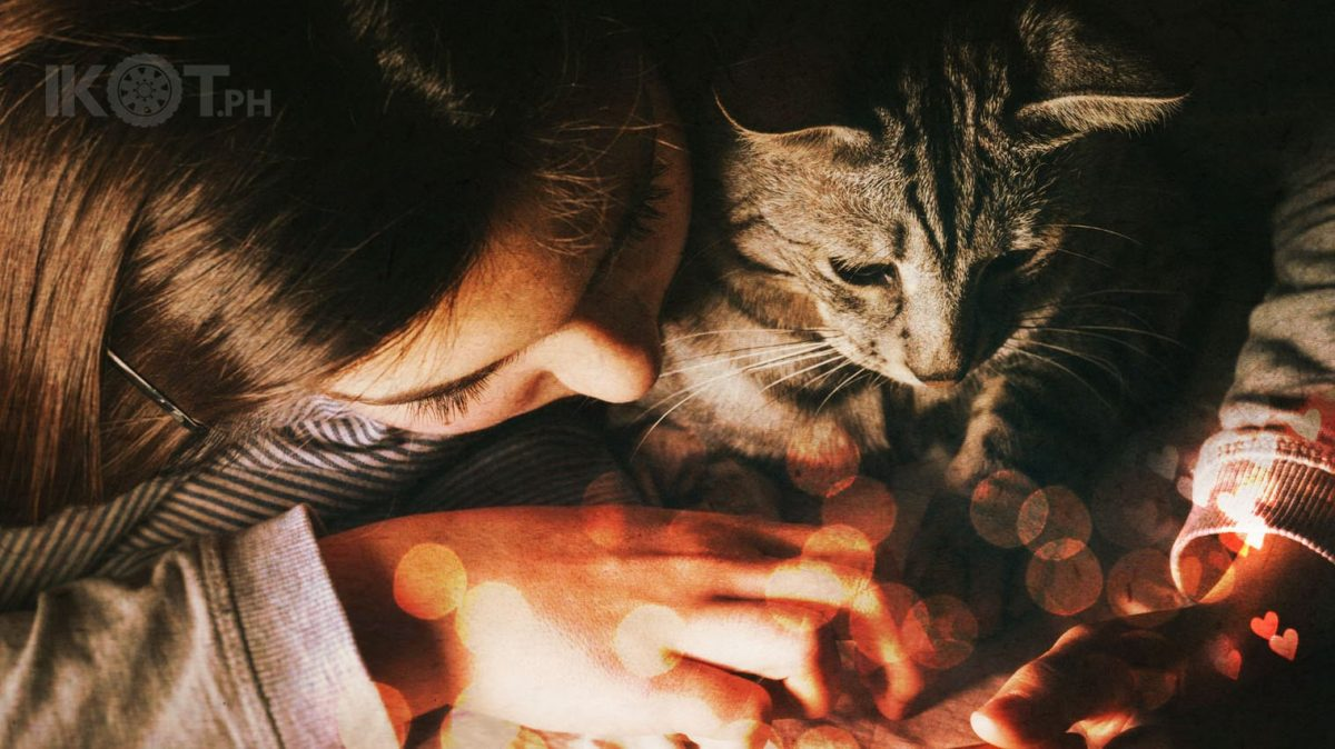 a girl cuddling with a cat